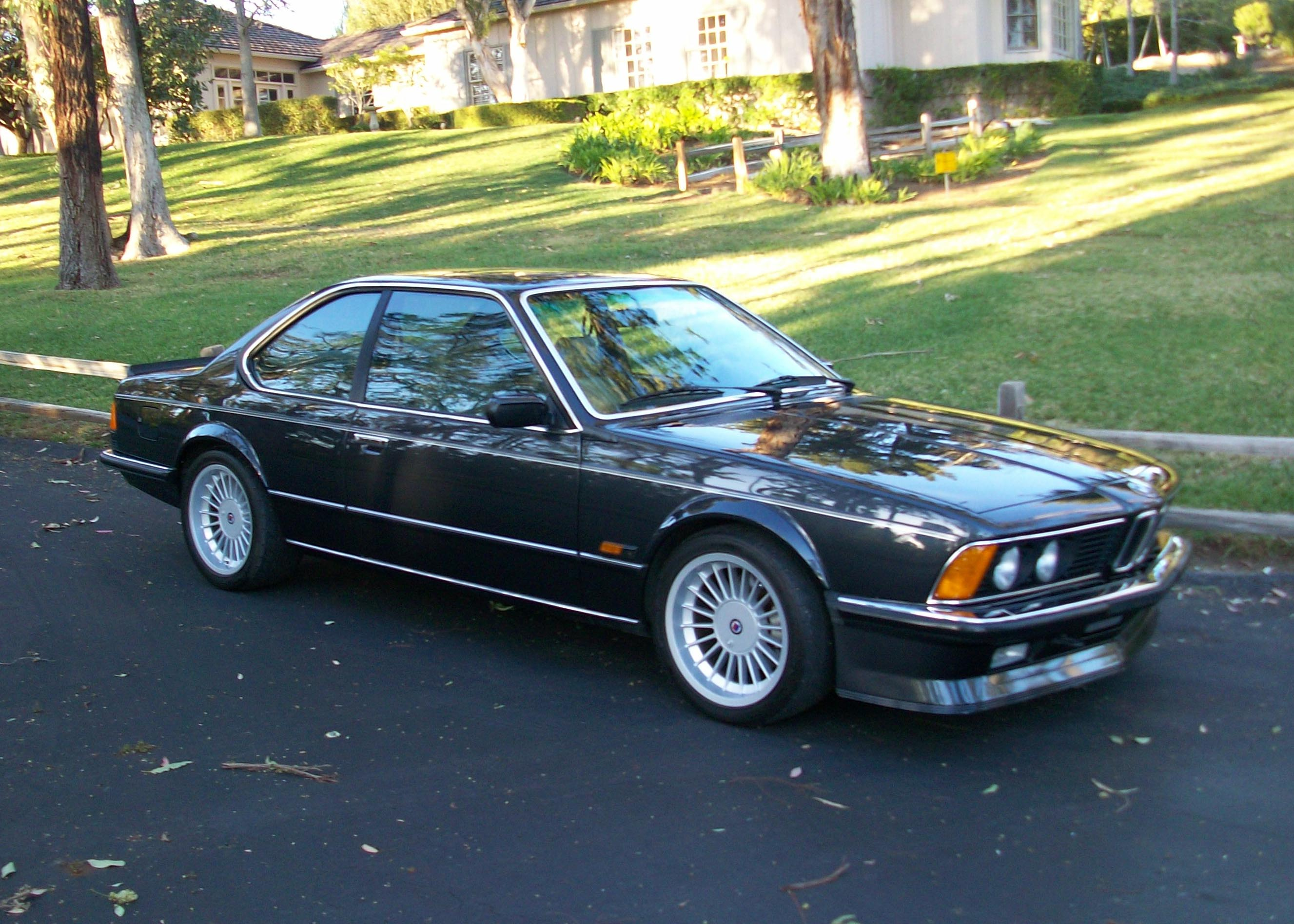 BMW M 635CSi photo 04