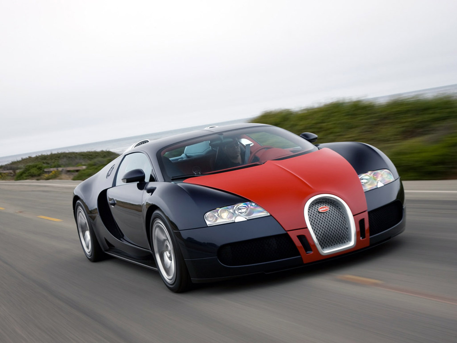 Bugatti Veyron photo 04