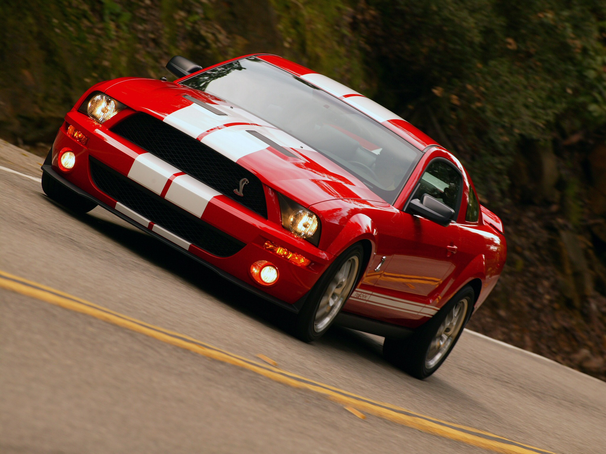 Ford Mustang photo 09