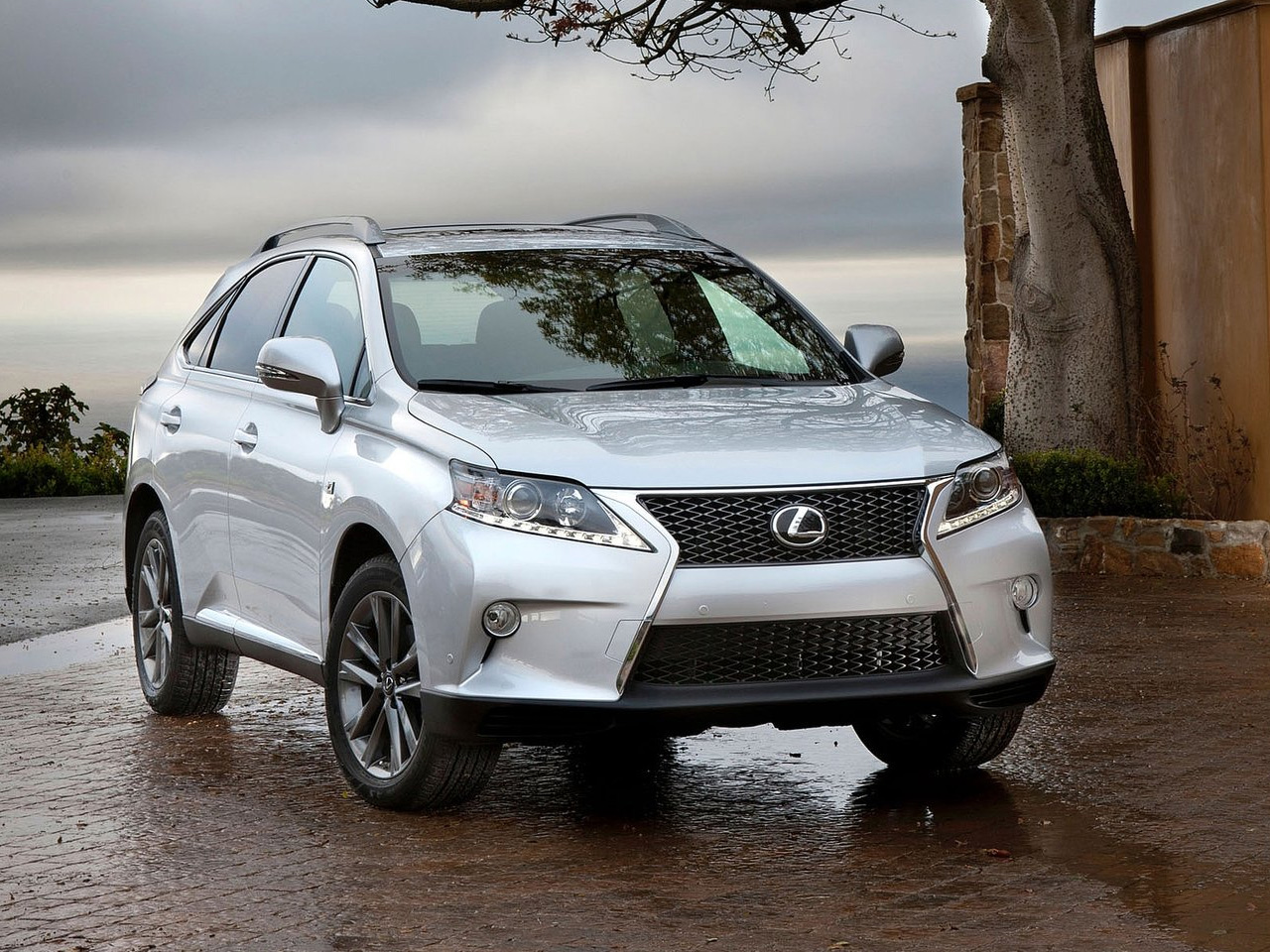 Lexus RX F Sport photo 06