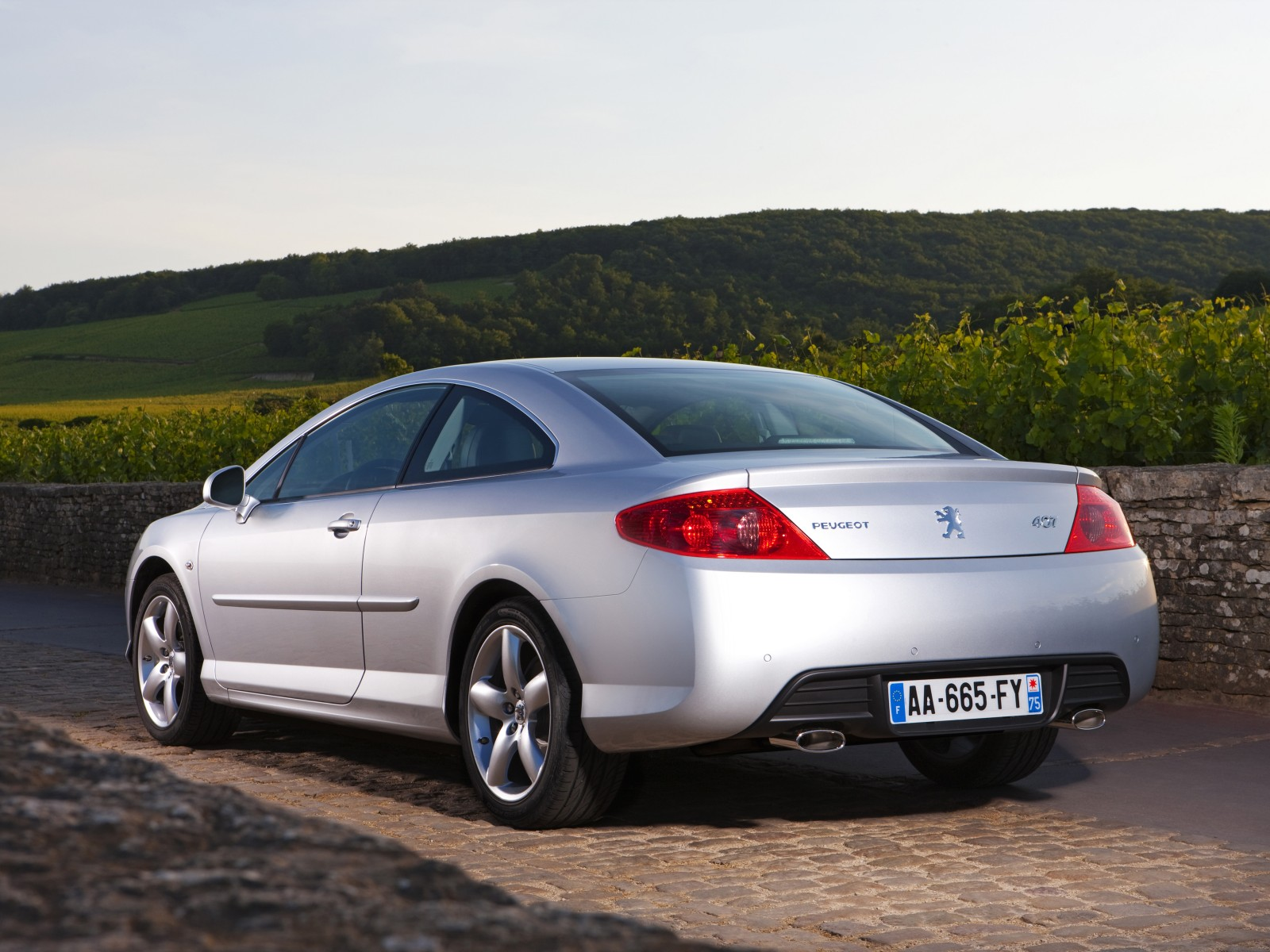 Peugeot 407 Coupe photo 04