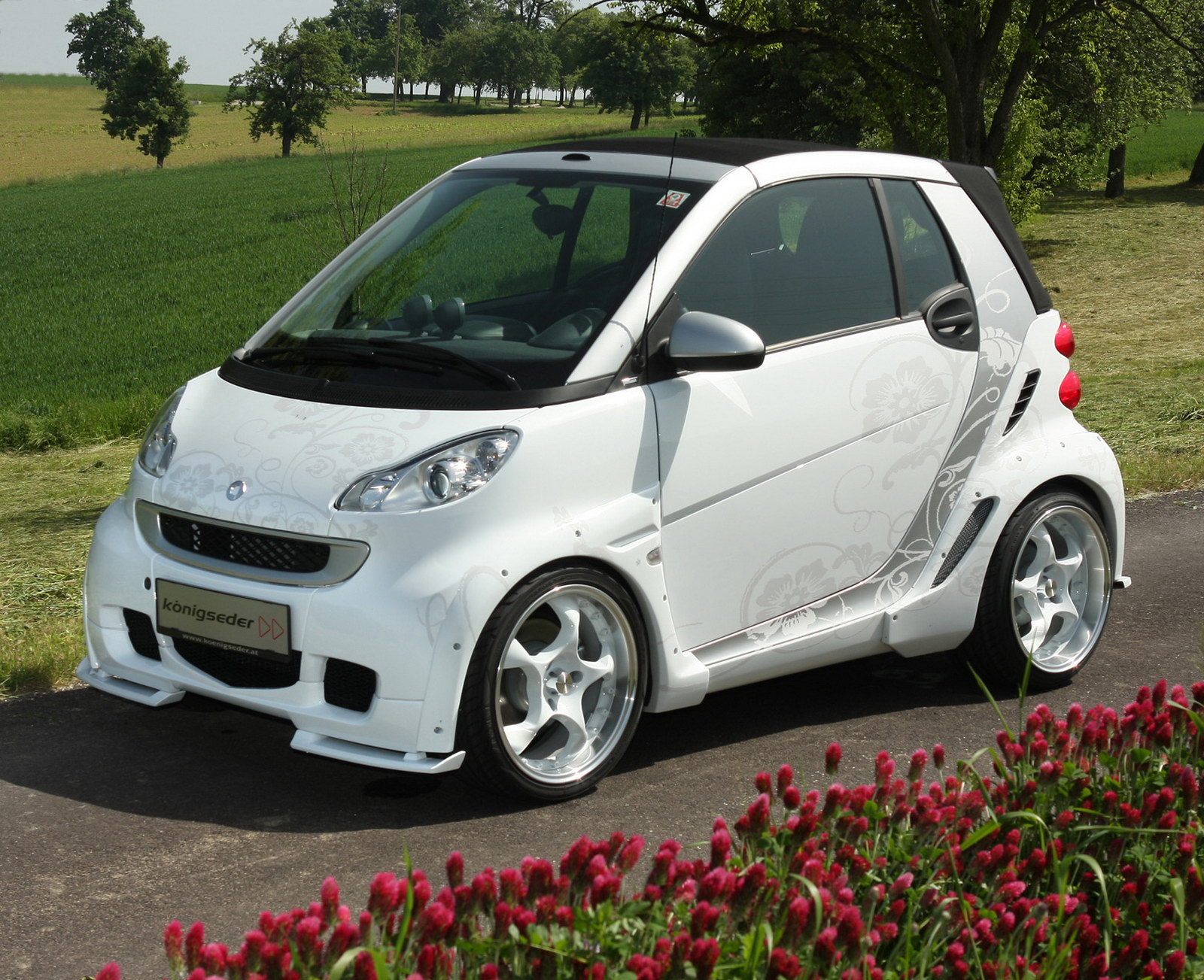 Smart fortwo photo 08