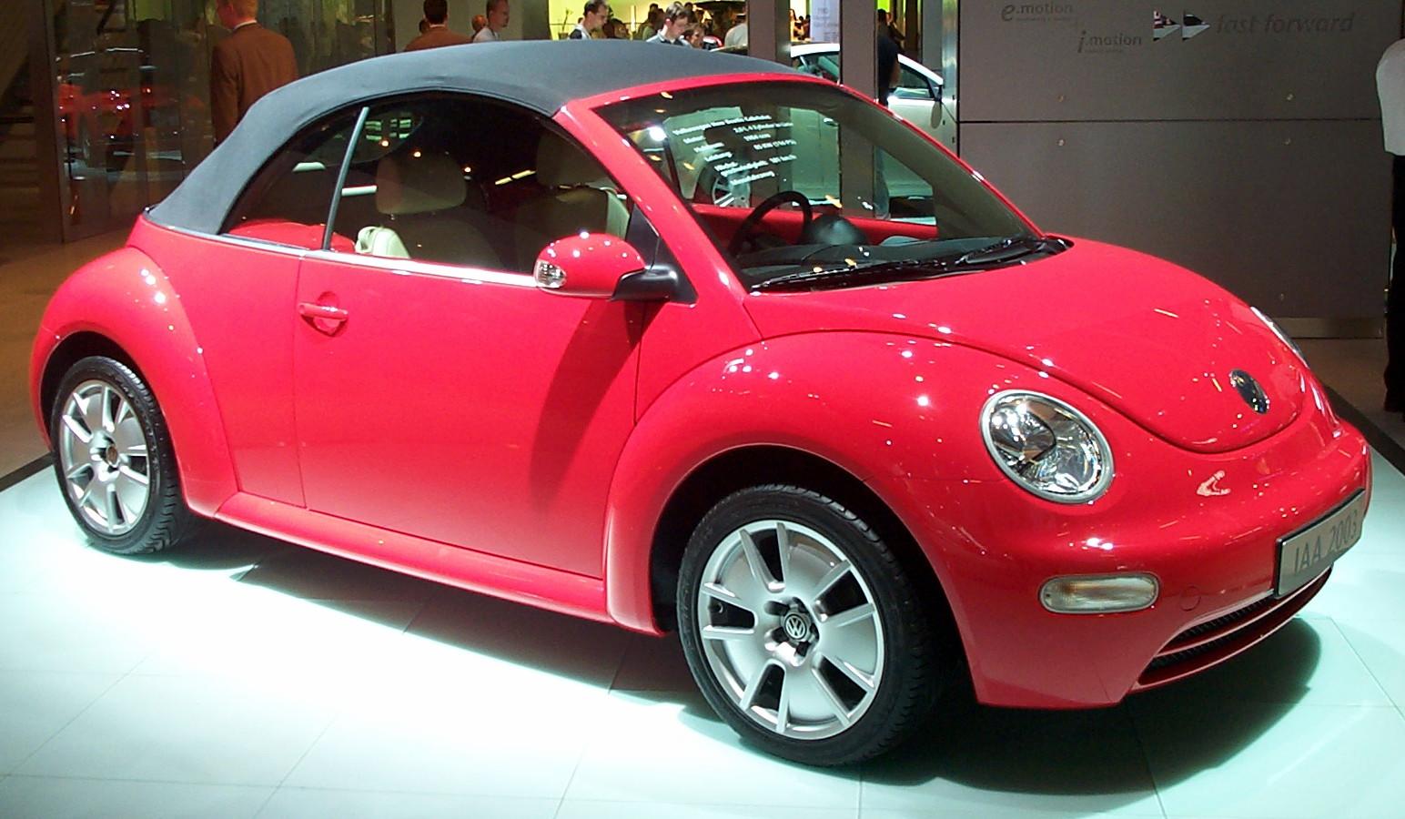 new beetle essay