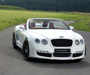 Bentley Continental GTC image #6