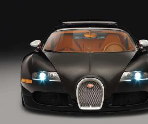 Bugatti Veyron photo 14