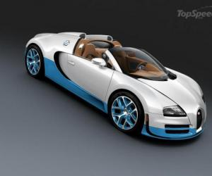 Bugatti Veyron Grand Sport Vitesse photo 11