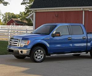 Ford F 150 photo 5
