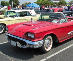 Ford Thunderbird photo 1