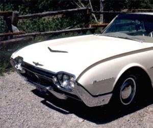 Ford Thunderbird photo 4