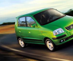 Hyundai Atos Flower photo 4