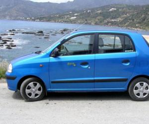 Hyundai Atos Flower photo 7