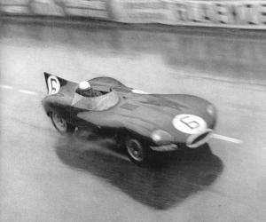 Jaguar D-Type photo 5