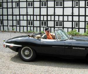 Jaguar E-Type photo 2
