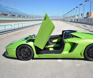 Lamborghini Aventador Roadster photo 16