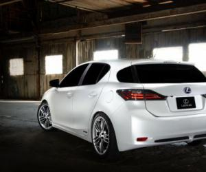Lexus CX 300h photo 12