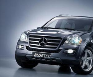 Mercedes-Benz GL 420 Bluetec photo 1