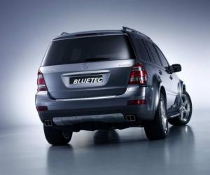 Mercedes-Benz GL 420 Bluetec photo 2