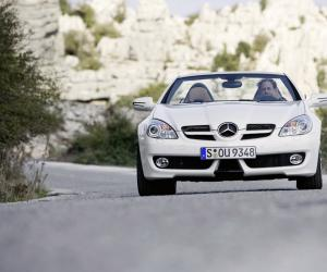 Mercedes-Benz SLK 280 photo 14