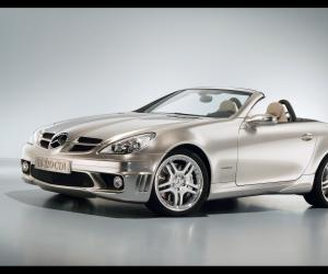 Mercedes-Benz SLK 320 photo 6