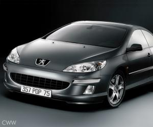Peugeot 407 Coupe photo 6