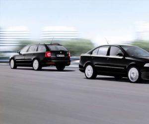 Skoda Octavia Sport Edition photo 1