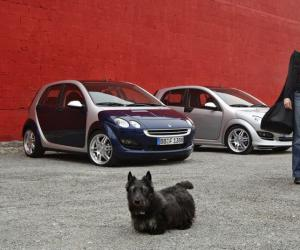 Smart forfour BRABUS SBR photo 13