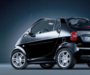 Smart fortwo sunray image #11