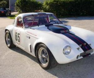 TVR Griffith image #13