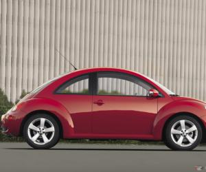 VW Beetle photo 4