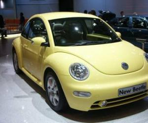 VW Beetle photo 6