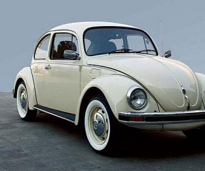 VW Beetle photo 8
