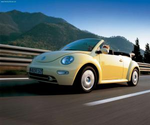 VW New Beetle photo 5