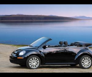 VW New Beetle photo 12