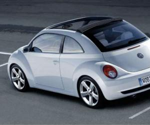 VW New Beetle photo 14
