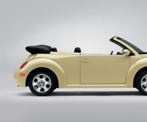 VW New Beetle photo 18