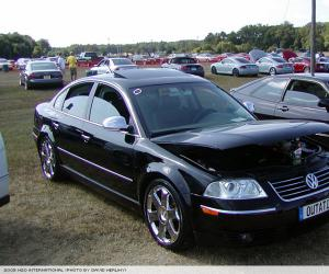 VW Passat 4Motion photo 4